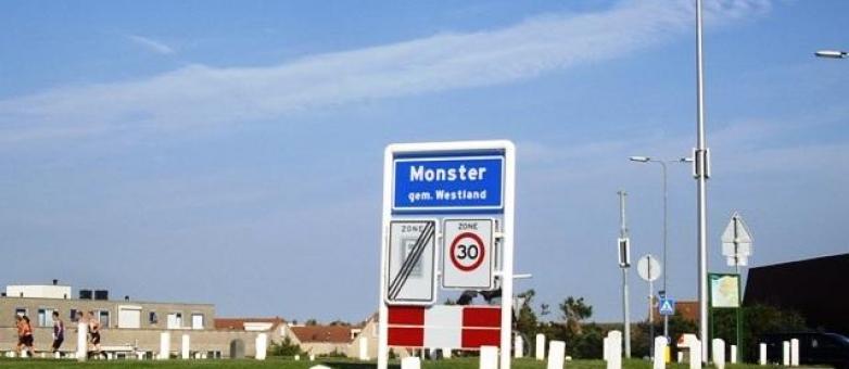 Vragen Aan College Inzake Onderhoud Openbaar Gebied Seringenstraat Monster